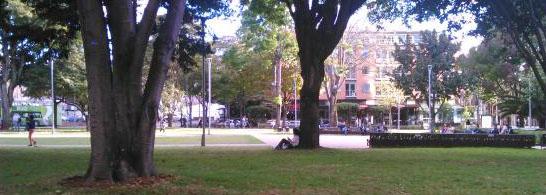 Parque soleado-1-Recortada